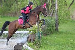 Olympia - Český teplokrevník - Koně na prodej